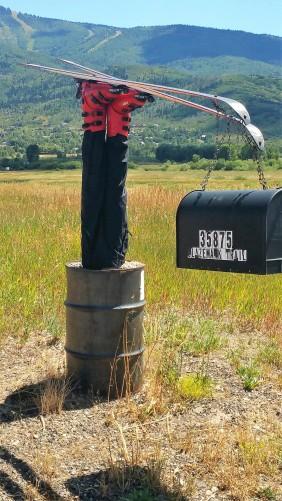 A Colorado Mailbox