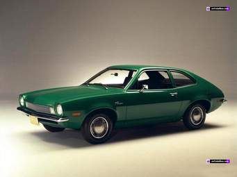 A Pinto, yes and it was popular
